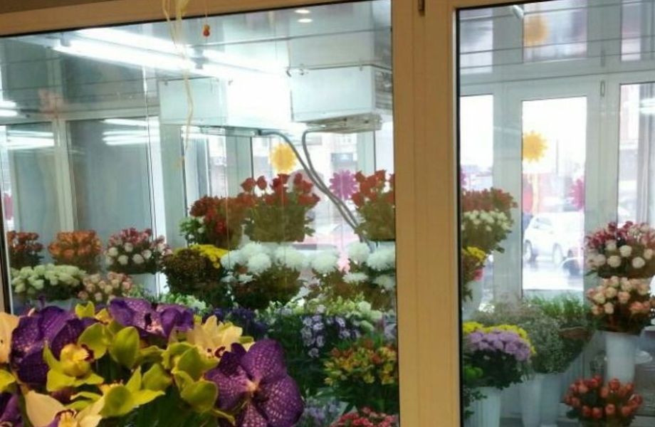 Салон цветов (удачное месторасположение)