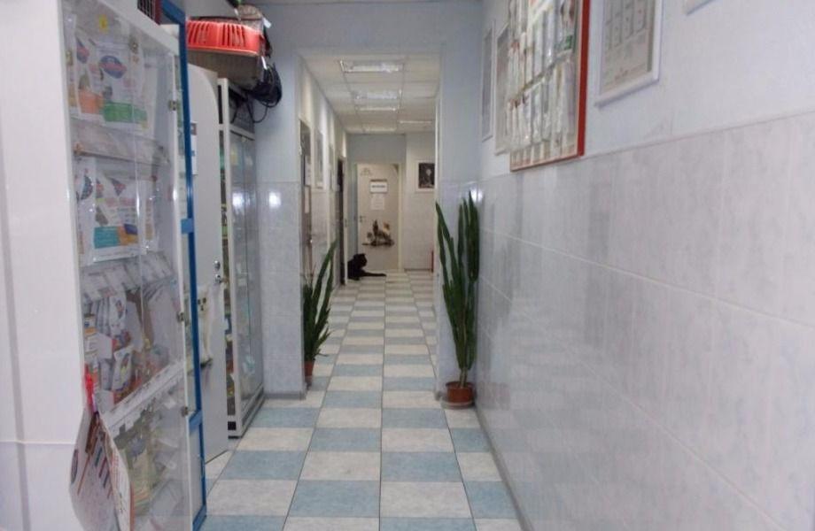 Ветеринарная клиника с Зоомагазином и Аптекой