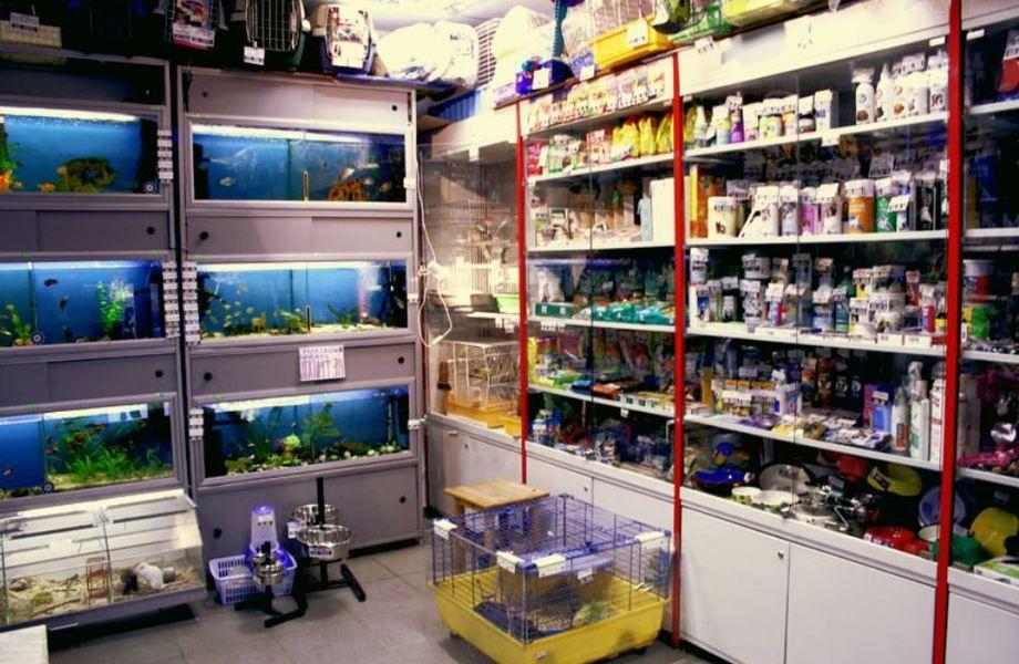 Зоомагазин в Гатчине с большим товарным остатоком