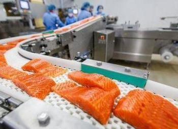 Узнаваемое действующее производство по переработке рыбы