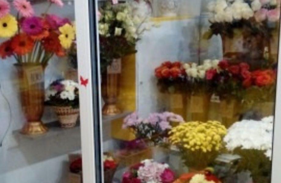 Цветочный Магазин В Зоне Без Конкуренции на Севере