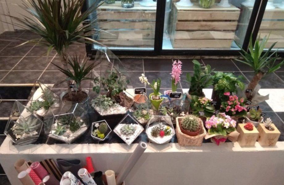 Цветочный Бутик в Центре с Онлайн Магазином