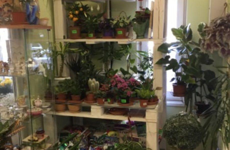 Цветочный магазин в Красногвардейском Районе