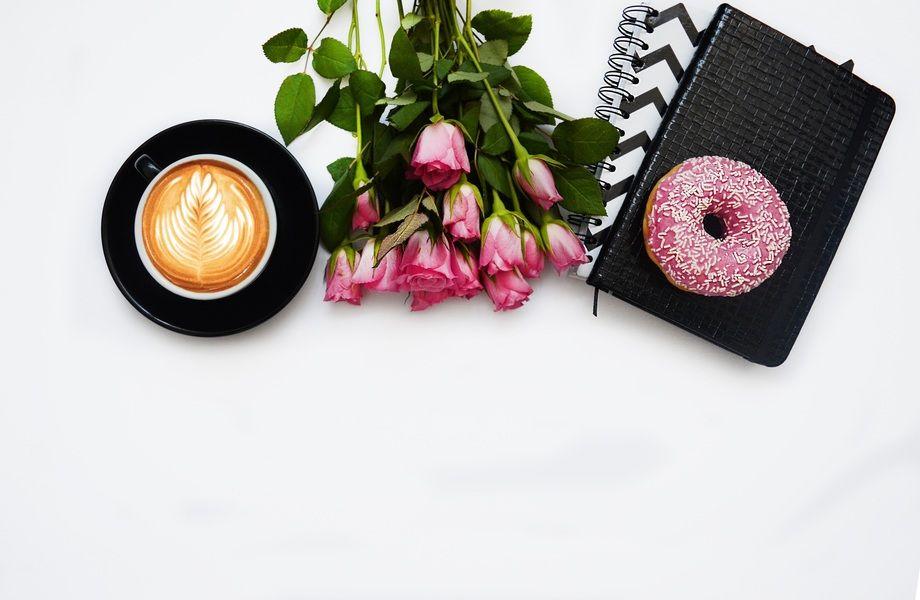 e5699f51164e ... Шоурум + кофейня + цветочный магазин в самом центре Петербурга ...