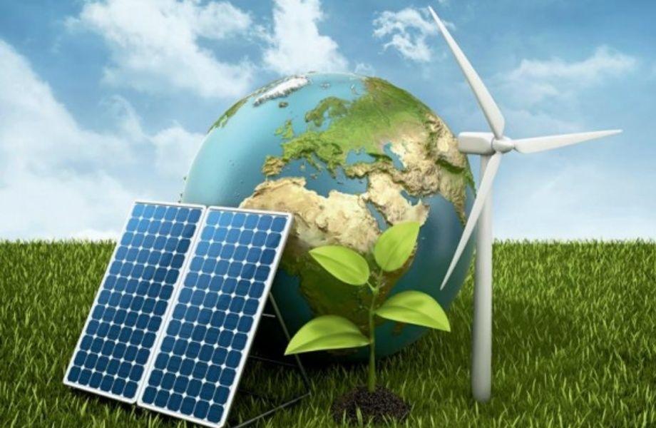 Доля в проектной организации в сфере охраны окружающей среды