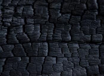 Производство древесного угля и дров