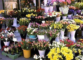 Цветочный магазин с высоким трафиком