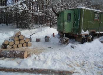 Лесозаготовка в Ленинградской области на участке в собственность