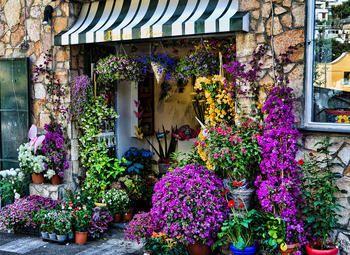 Цветочный магазин в дизайнерском стиле