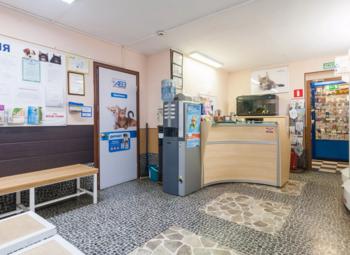 Прибыльная ветеринарная клиника в Приморском районе