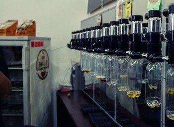 Магазин крафтового пива в Купчино