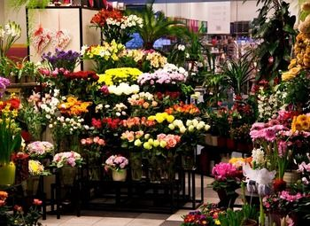Цветочный магазин у Александровского парка