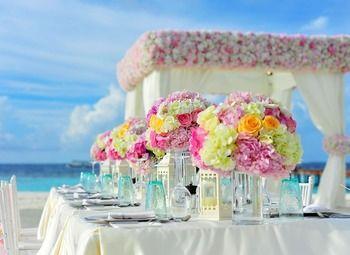 Агенство по организации свадеб и праздников
