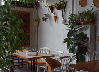 Вегетарианское кафе в центре