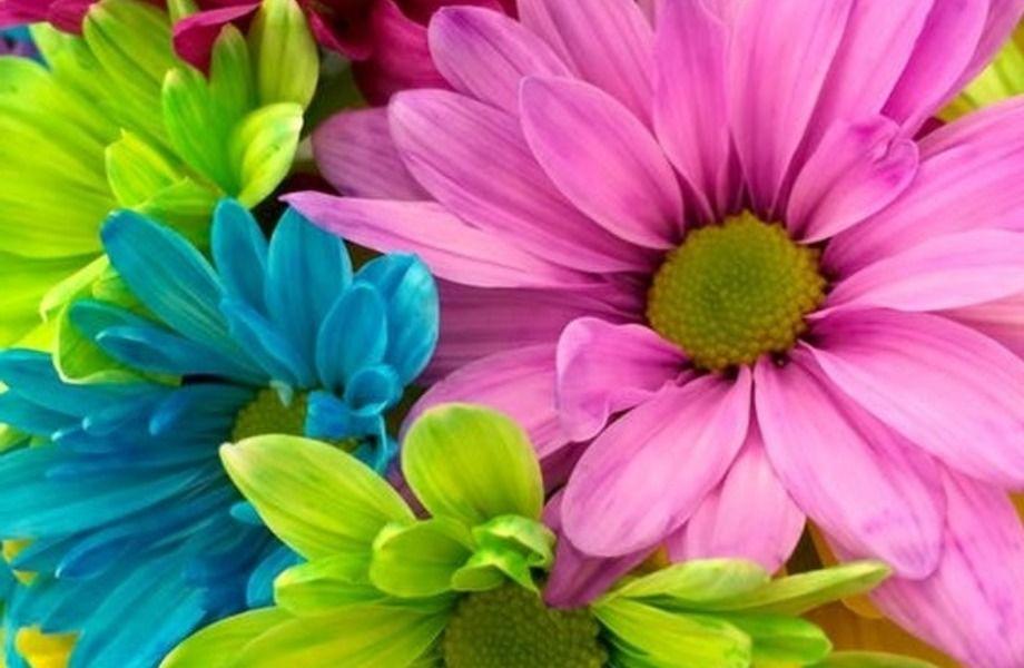 Цветочный магазин в крупном спальном районе