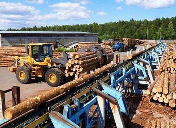 Лесопереработка в собственность в Челябинской области