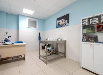 Ветеринарная клиника с высокой прибылью