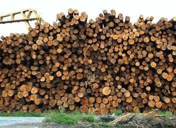 Деревообрабатывающее прозводство в городе Киров