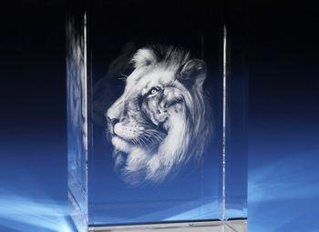 Студия лазерной(+3D) гравировки внутри стекла и резки