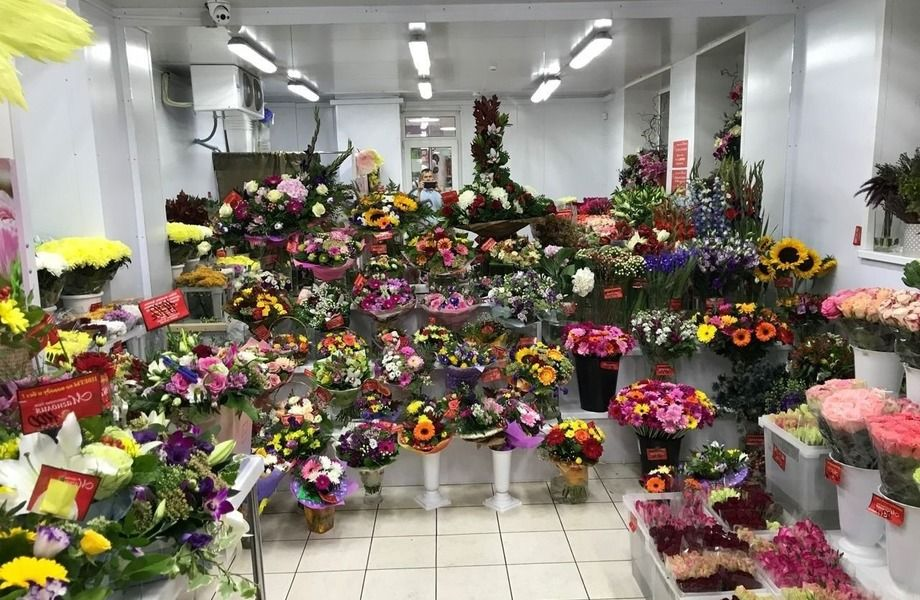 Действующий цветочный магазин с подтверждённой прибылью