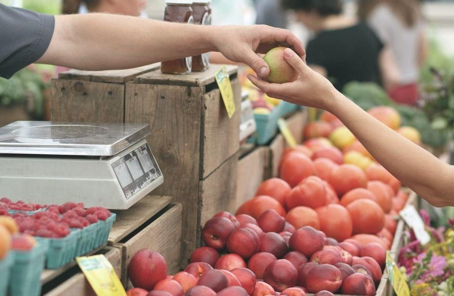 Овощной магазин в крупном ЖК + Брендбук