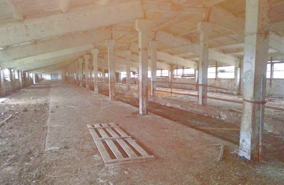 Обширные с/х угодья и основа животноводческого хозяйства