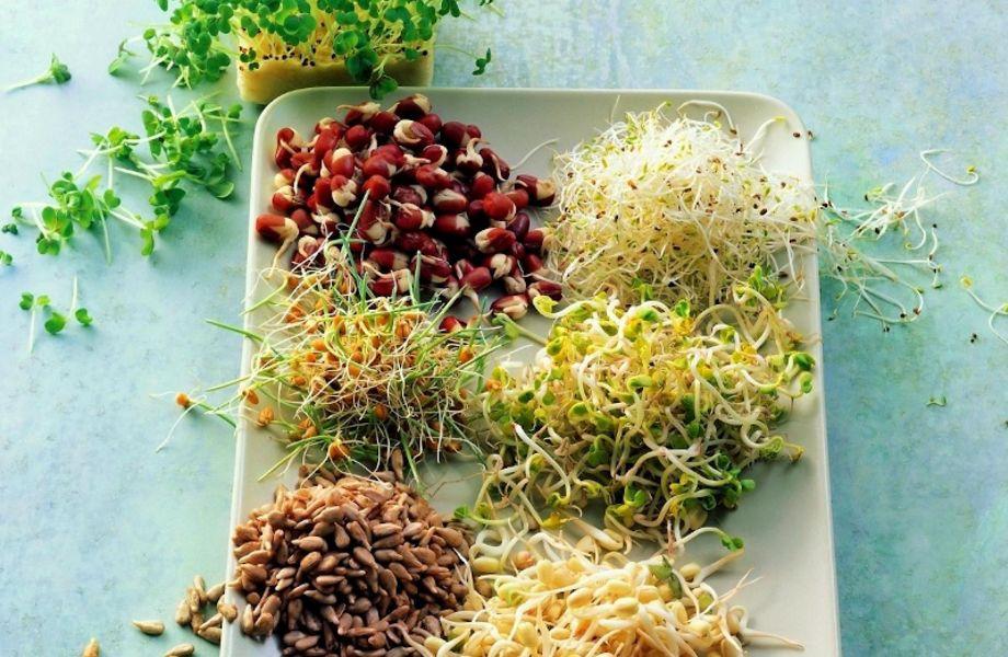 Партнерство. Производство салатов для здорового питания.