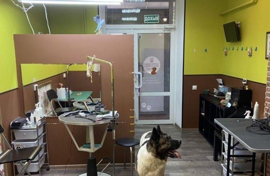 Действующий груминг салон-кабинет на северо западе Москвы