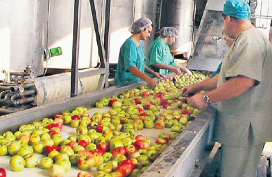 Предприятие по производству соков (20 лет работы)