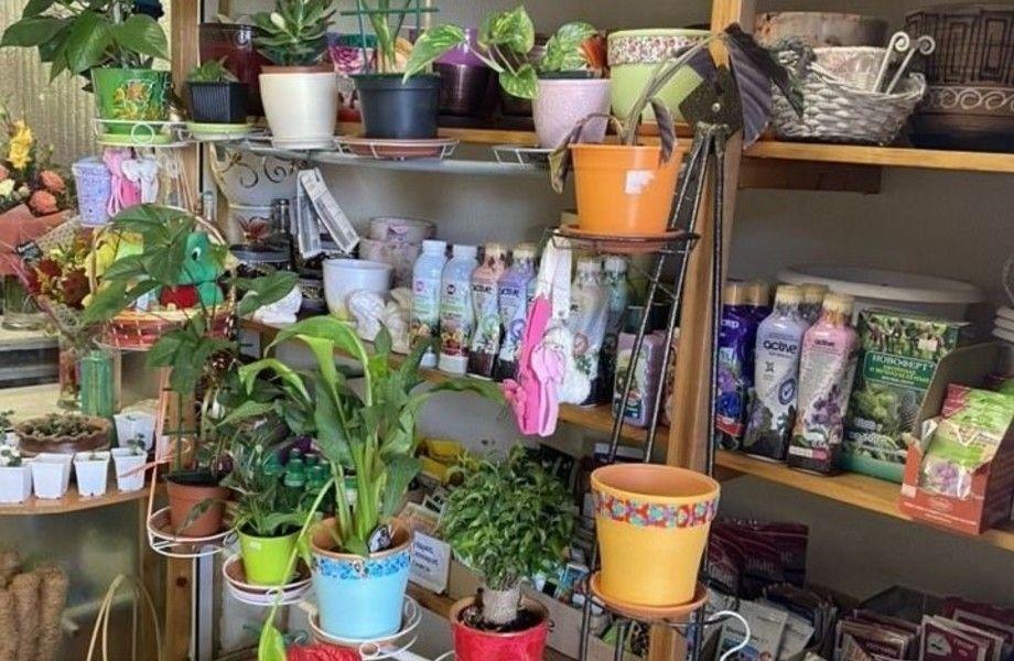 Цветочный дворик в Зеленограде (бизнесу 11 лет) / Без конкурентов