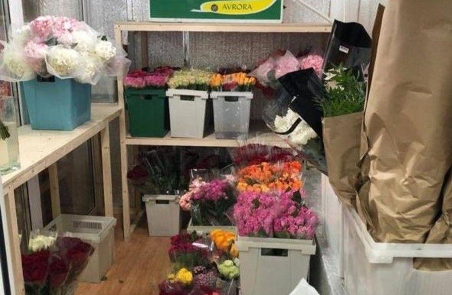 Розничный магазин цветов с низкой арендой и интернет-сайтом