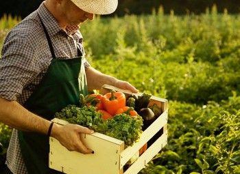 Доля в сельскохозяйственном бизнесе
