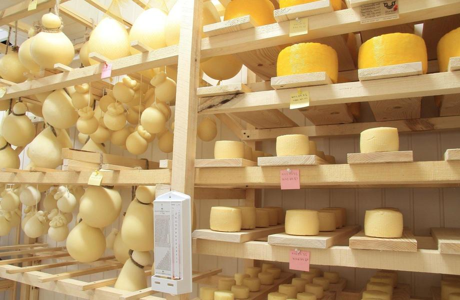 Бизнес под ключ. Сыроварня/Производство сыра