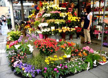 Магазин цветов/прибыль 40 тыс.руб.