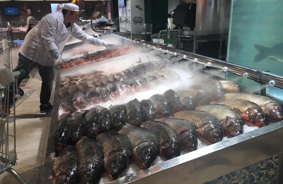 Оптовая и розничная торговля рыбой. Эксклюзивное предложение