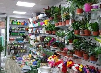 Цветочный магазин на проходном проспекте / 2 года работы