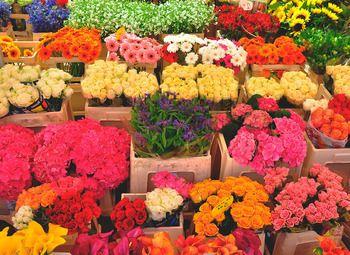 Цветочный магазин в топовой локации