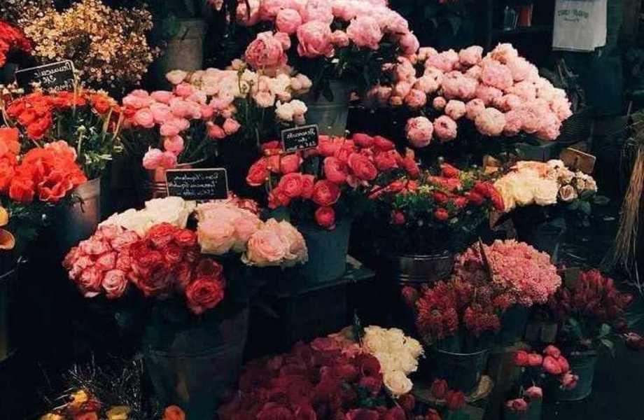 Цветочный магазин возле метро с ЧП от 100.000