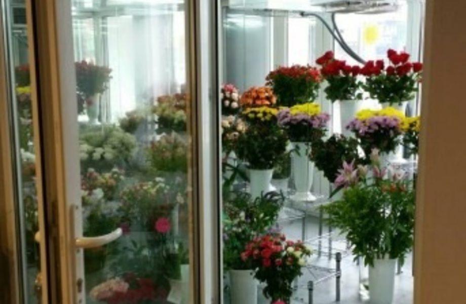 Перспективный цветочный магазин