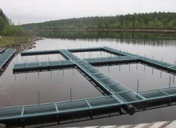 Рыбное тепловодное хозяйство