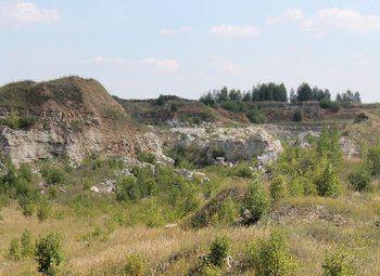 Месторождение карьер ИЗВЕСТНЯКОВЫЙ в Рязанской Обл.