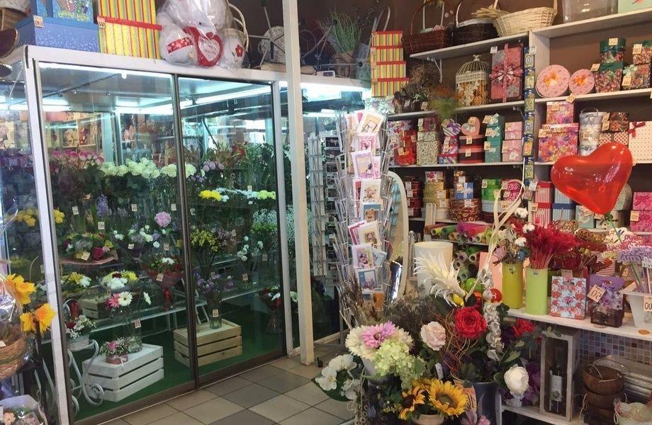 Магазин цветов в копыле цены